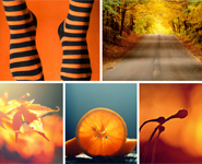 Theme Vote - Orange
